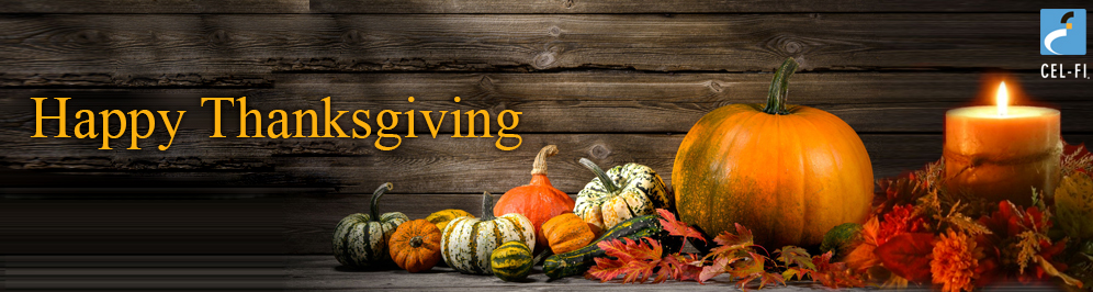 banner_2015-Thanksgiving_996x266_v2